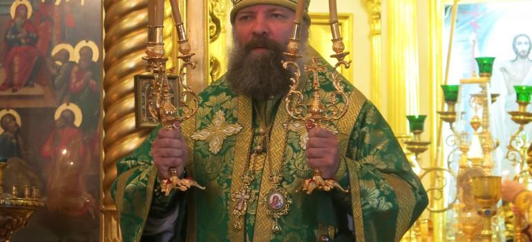 Епископ Душанбинский и Таджикистанский Питирим о строительстве храмов и «розовом христианстве»